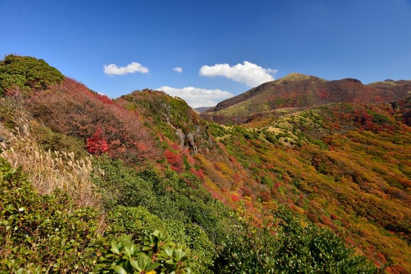141025沓掛山 (7)