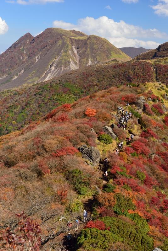 141025沓掛山 (16)