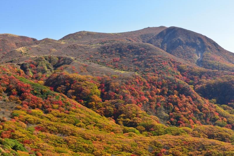 141025沓掛山 (15)