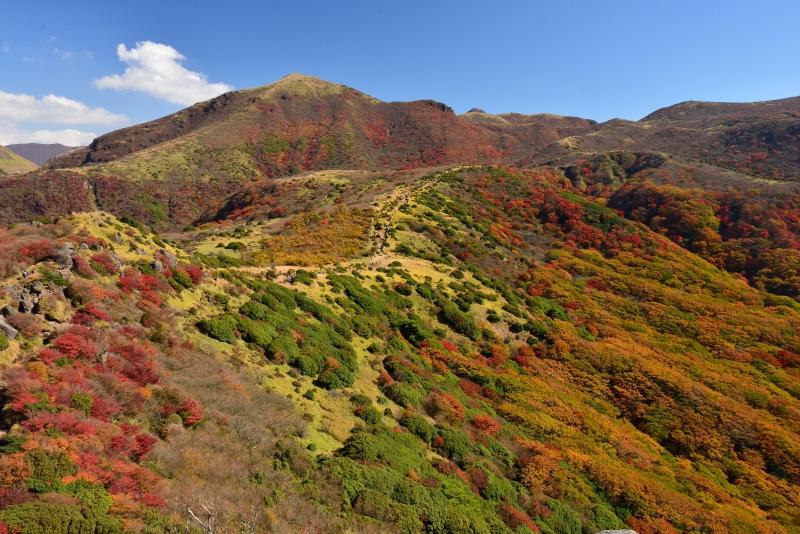 141025沓掛山 (14)