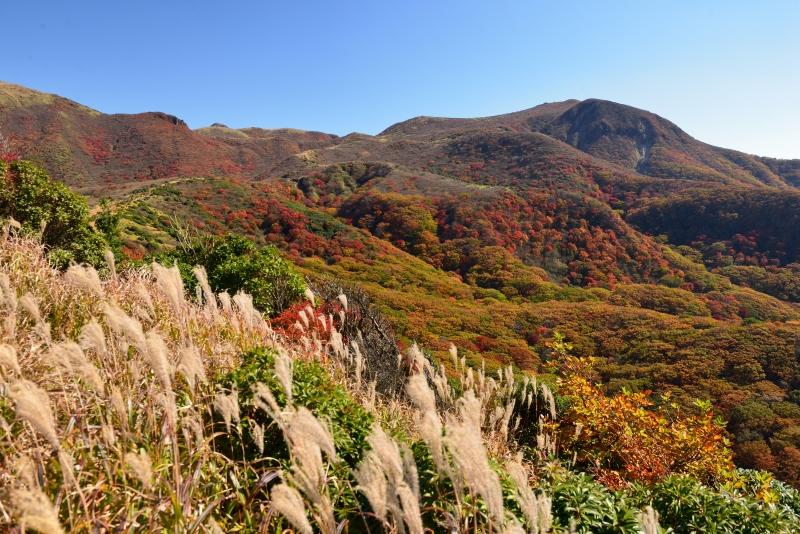 141025沓掛山 (20)