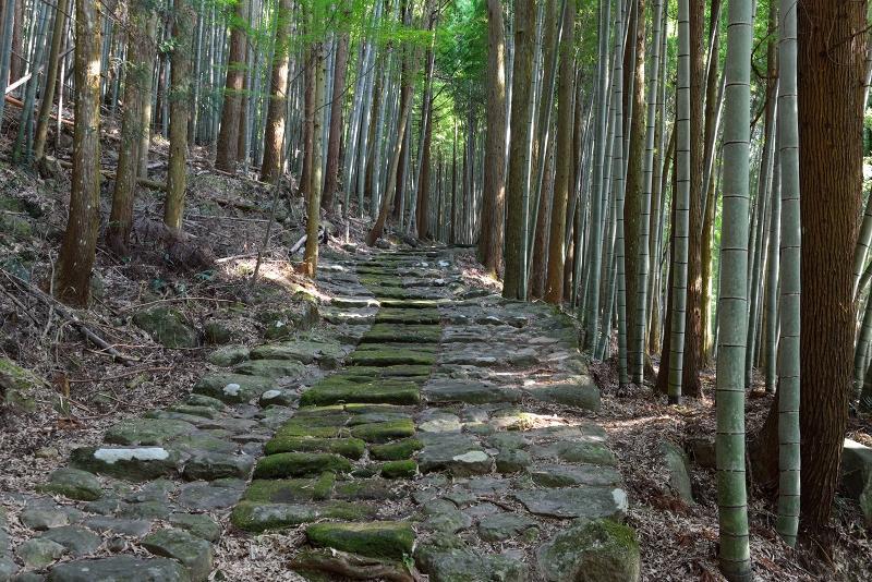 石坂石畳道 (2)