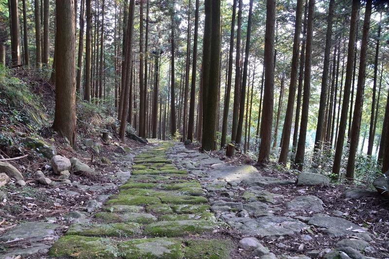 石坂石畳道 (15)