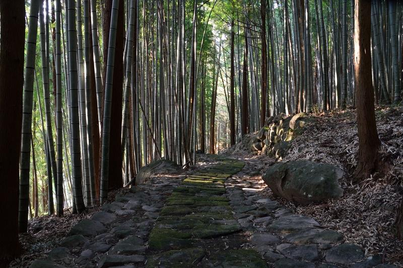 石坂石畳道 (22)