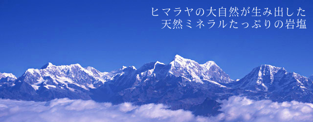 salt-f_himaraya.jpg