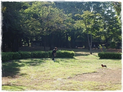 駒沢あ散歩  ⑤
