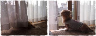 201410帰省ー①-horz