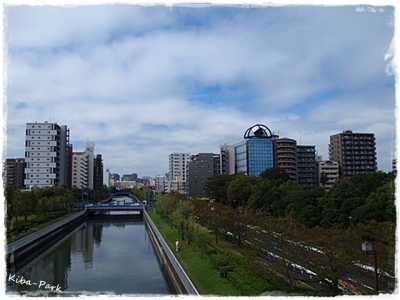 20141016-3.jpg