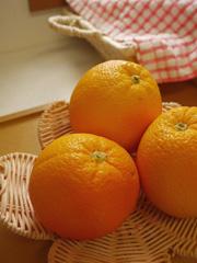 orangeJelly02.jpg
