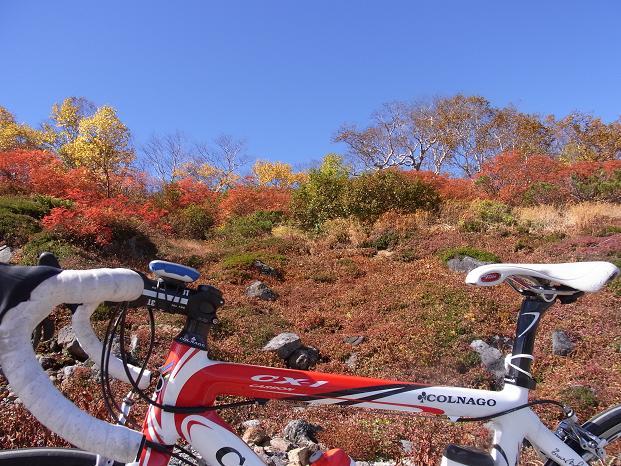20101011乗鞍紅葉サイクリング0473