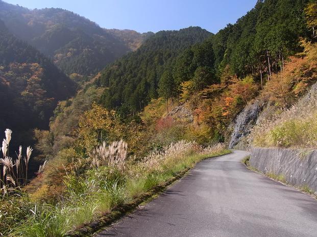 20101106吉野大峰林道紅葉狩サイク0545