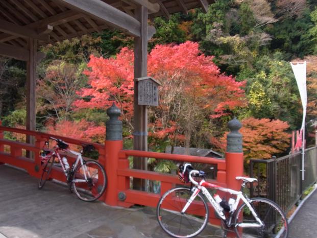 20101120笠長谷寺談山神社よろず0591