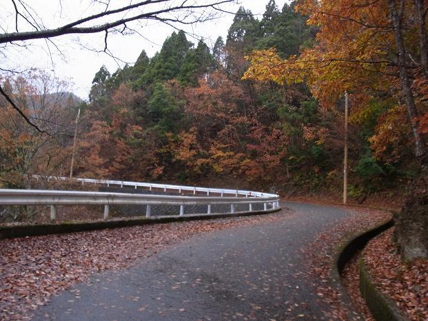 20101123京都北山紅葉ツーリング0613