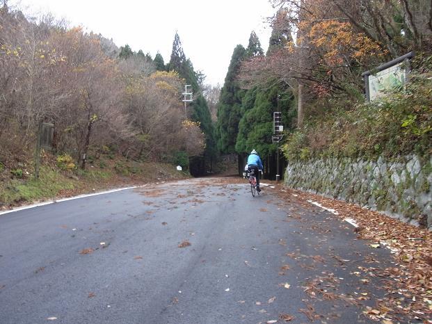 20101123京都北山紅葉ツーリング0610