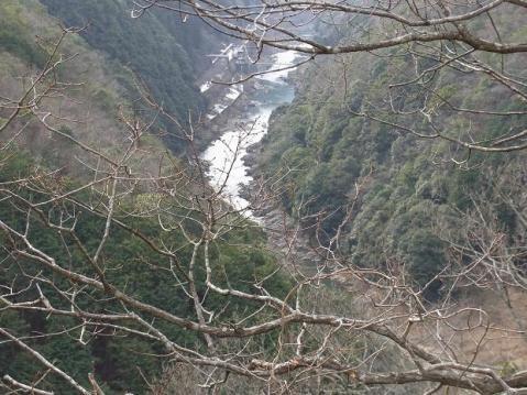 20110123嵐山と保津峡1044
