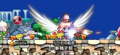 Maple120206_173027.jpg