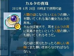 Maple120328_153024.jpg