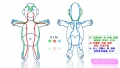 人体の地図 解説