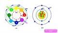 原子と人体