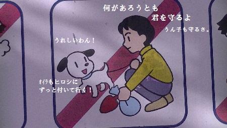 PIC_1145(1) - コピー