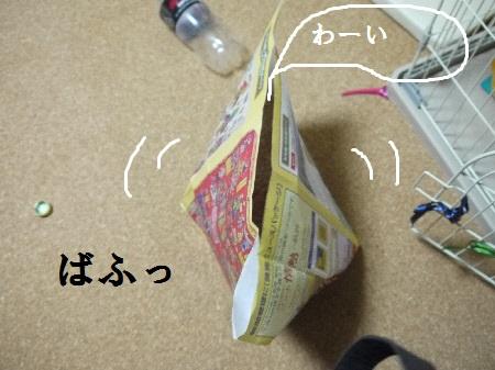 P1240870(1).jpg