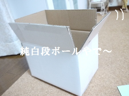 P1250213(1).jpg
