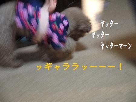 P1250479(1).jpg