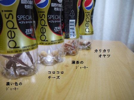P1250501(1).jpg