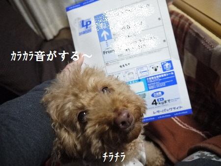 P1250872(1).jpg