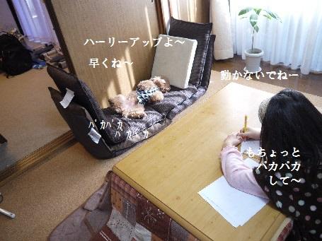 P1250893(1).jpg