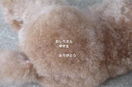 P1320582(1).jpg