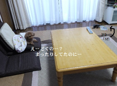 P1320645(1).jpg