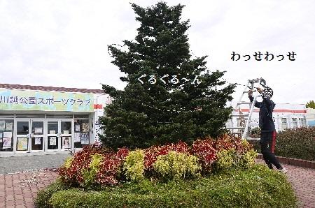 P1320759(1).jpg