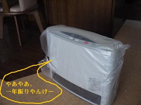 P1330315(1).jpg