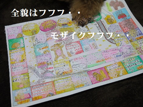 P1340024(1).jpg