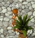 70_20101218210538.jpg
