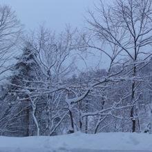 夜中に落雪の音1
