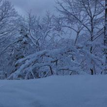 夜中に落雪の音2