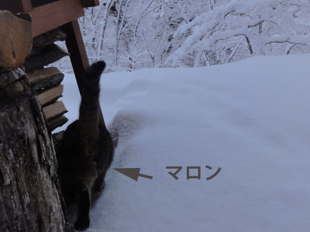 夜中に落雪の音3