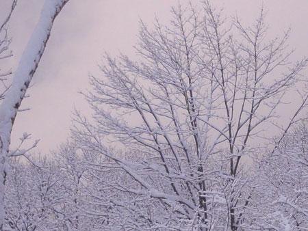 夜中に落雪の音6