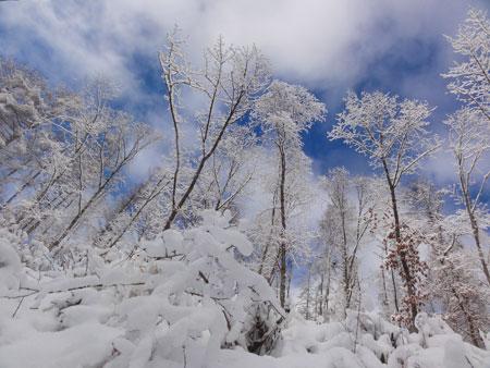 雪道のお散歩!1