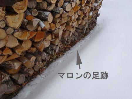 雪、雪、雪・・・8