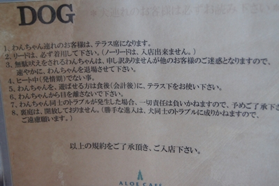 DSC01368.jpg