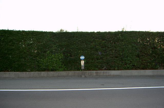 blog20101117-15.jpg