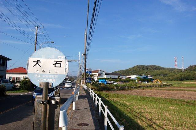 blog20101117-8.jpg