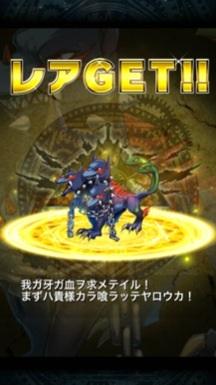 わんわんお!×3