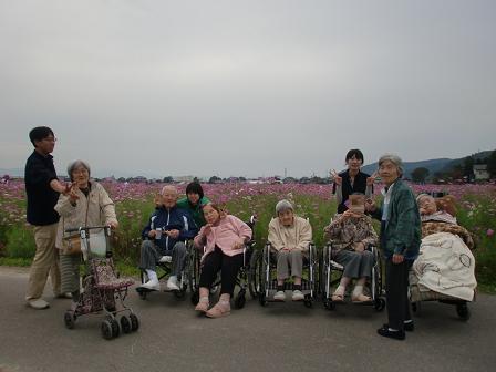 2012コスモス公園2nd (21)