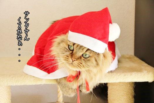 サンタさんくるかなぁ~