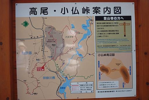 景信山  小仏峠