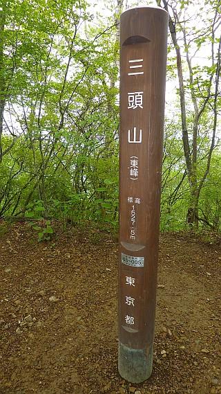 三頭山 ロックガーデン